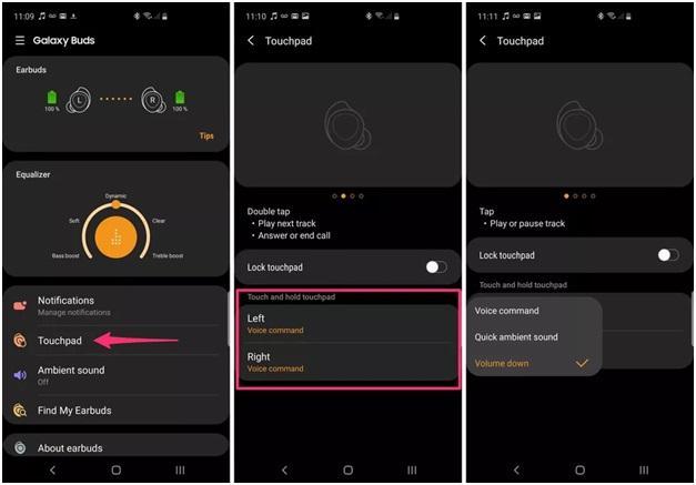 Samsung Galaxy ear buds app