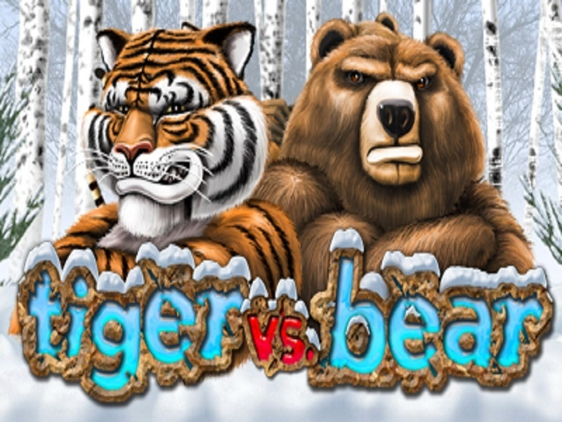 tiger vs bear pokies