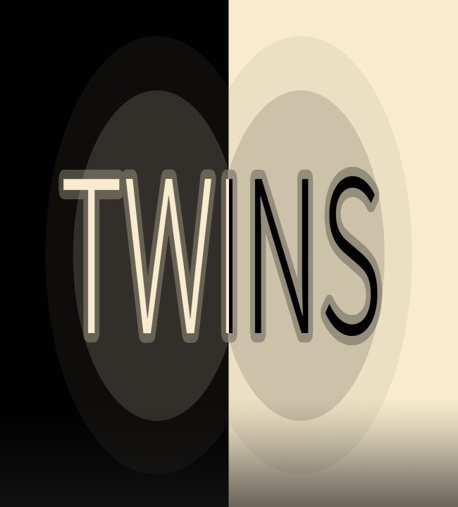 twins minigame